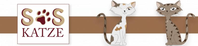 Katzenkalender SOS-Katze 2015