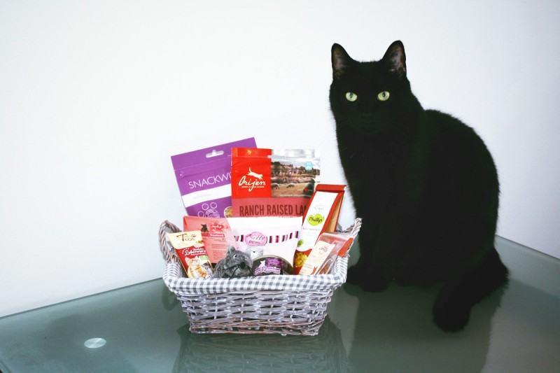 Filou mit Geschenkkorb für KatzenFilou mit Geschenkkorb für Katzenbesitzer