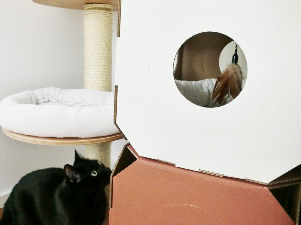 MiauModul mit zaBird Katzenangel
